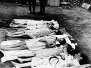 Thế giới - Khủng khiếp vụ 1.000 người tự sát trong 72 giờ tại Đức