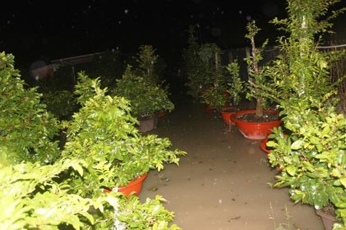 TPHCM: Vỡ bờ bao, dân tháo chạy khỏi nhà trong đêm - 7
