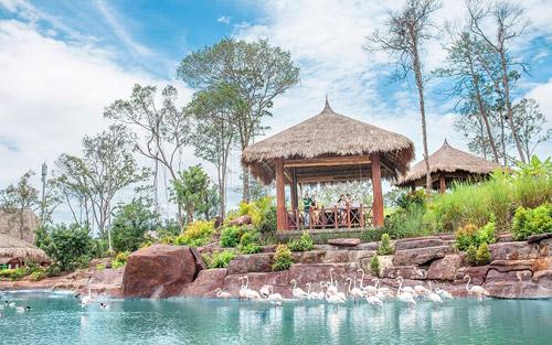 4 cung bậc cảm xúc tại vườn thú mở đầu tiên và duy nhất của Việt Nam - 2