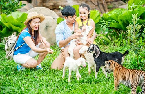 4 cung bậc cảm xúc tại vườn thú mở đầu tiên và duy nhất của Việt Nam - 8