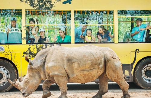 4 cung bậc cảm xúc tại vườn thú mở đầu tiên và duy nhất của Việt Nam - 5