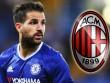 Fabregas: Chelsea hắt hủi, Milan cũng phũ phàng