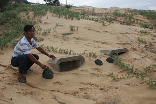 Hàng trăm ngôi mộ vùi trong cát, đá - 1