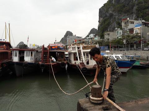 Quảng Ninh-Hải Phòng cấm biển, căng mình ứng phó bão số 7 - 2