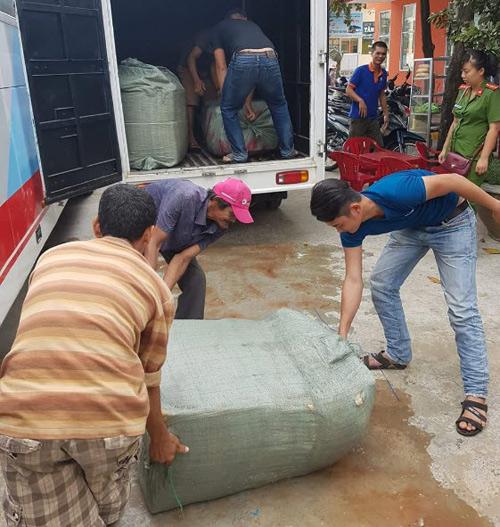 Bắt giữ hơn 300 kg nội tạng bốc mùi thối chở sang Lào tiêu thụ - 1