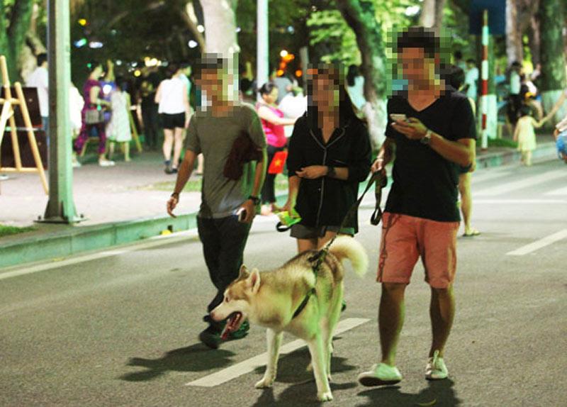 Dắt chó đi dạo không rọ mõm: Ở Anh phạt tới 70 triệu - 1