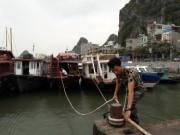 Tin tức trong ngày - Quảng Ninh-Hải Phòng cấm biển, căng mình ứng phó bão số 7