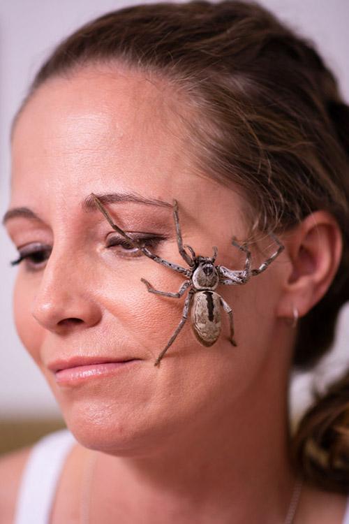 Cô gái Mỹ có sở thích chơi đùa và nuôi nhện độc - 1