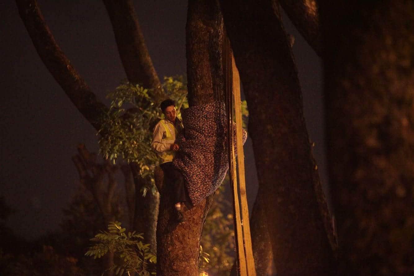 """Trắng đêm bứng gốc, di dời """"cụ cây"""" trên đường Kim Mã - 6"""