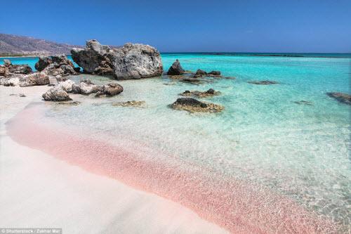 Những bãi biển màu hồng đẹp như mơ khắp thế giới - 1