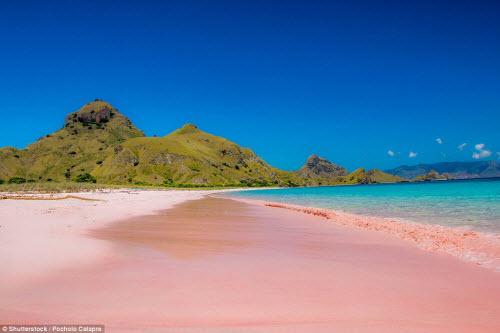 Những bãi biển màu hồng đẹp như mơ khắp thế giới - 2