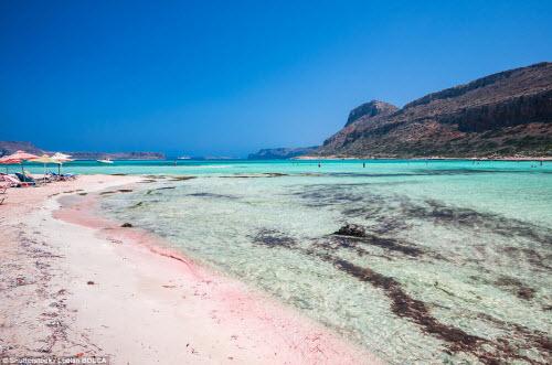 Những bãi biển màu hồng đẹp như mơ khắp thế giới - 4