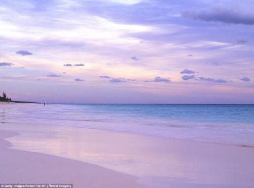 Những bãi biển màu hồng đẹp như mơ khắp thế giới - 6