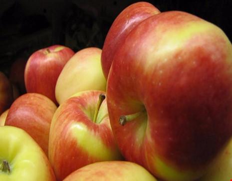 6 thực phẩm tốt cho giảm cân vào mùa thu - 2