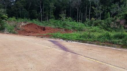 Tạm giữ 8 nghi phạm chém chết trưởng trạm bảo vệ rừng - 1