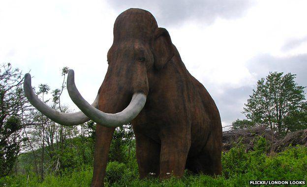 Anh: Nhặt được răng của voi ma mút 3 triệu năm tuổi - 2