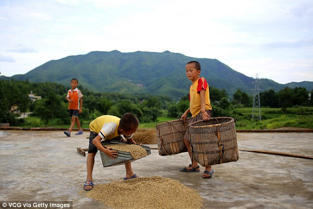 TQ: 61 triệu trẻ em không được bố mẹ chăm sóc - 1