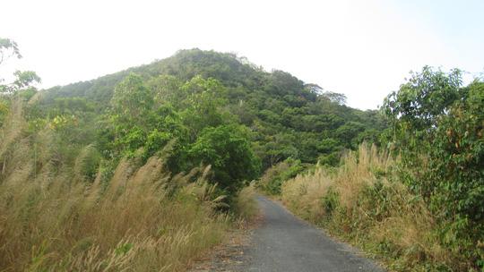 Những ngày đi trốn trên đảo Nam Du - 12