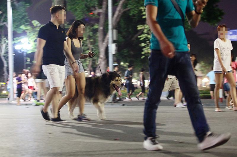 Cấm chó ở phố đi bộ: Chủ nhét chó vào túi để qua chốt - 1