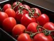 9 loại trái cây ăn vào là tiêu mỡ bụng