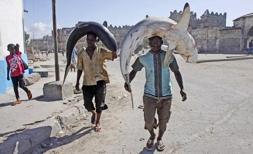 Sự thật bất ngờ về cướp biển Somalia - 3