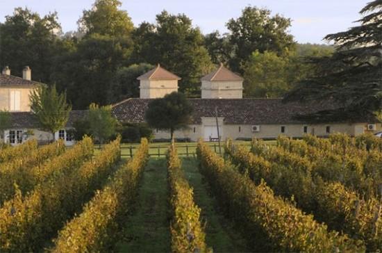 Đại gia TQ thâu tóm rượu vang Bordeaux, dân Pháp lo ngại - 2