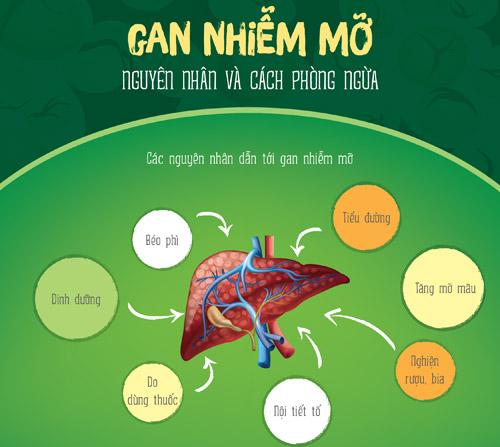 Gan nhiễm mỡ - nguyên nhân và cách phòng ngừa - 1