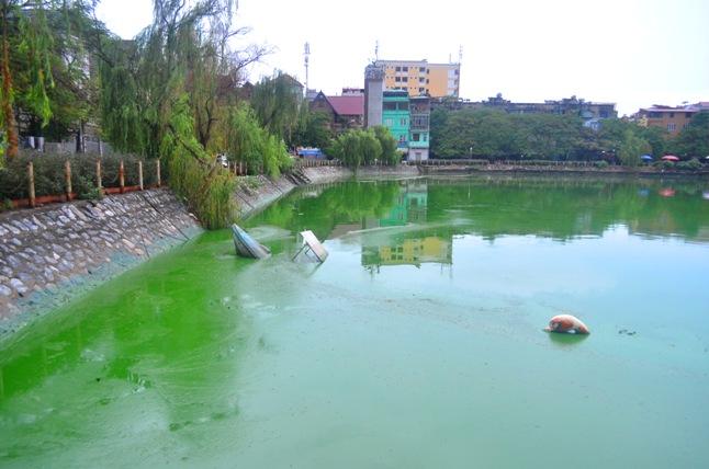 HN: Nước hồ Văn Quán đổi màu xanh biếc, hôi thối nồng nặc - 1