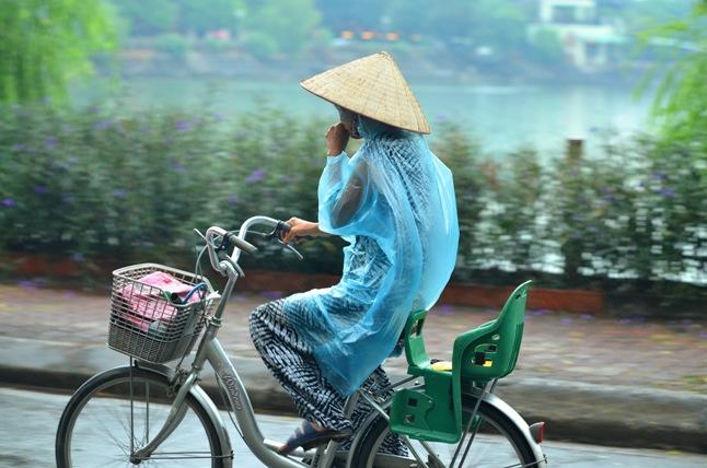 HN: Nước hồ Văn Quán đổi màu xanh biếc, hôi thối nồng nặc - 10