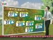 Dự báo thời tiết VTV 26/10: Bắc Bộ hửng nắng, Nam Bộ có mưa
