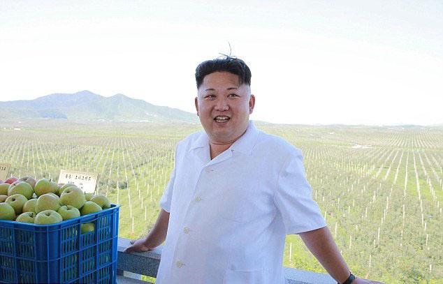 Kim Jong-un uống 10 chai Bordeaux đắt tiền trong bữa tối? - 1