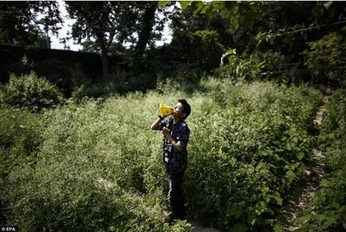 Kinh hoàng cách giảm đói của trẻ em nghèo Nepal - 8