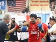 Thể thao - Boxing: 37 tuổi, Pacquiao trở lại hào sảng và mạnh mẽ