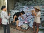 Thị trường - Tiêu dùng - Phó Thủ tướng yêu cầu siết lại thị trường phân bón