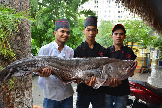Bỏ hơn 200 triệu để mua cá hô và cá leo khổng lồ - 3