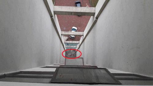 Hà Nội: Rơi từ tầng 11 chung cư, bé trai 8 tuổi tử vong - 2