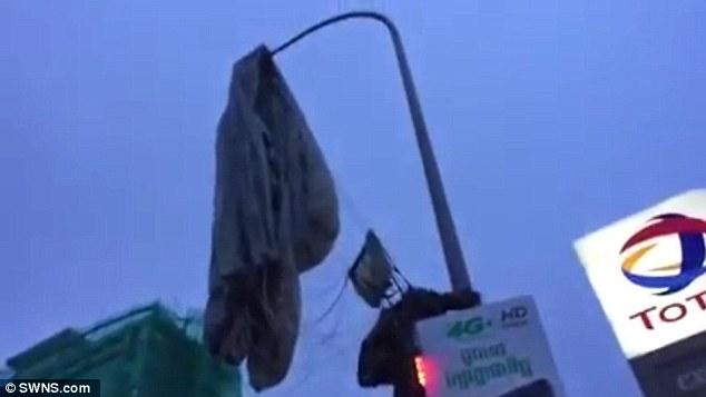 Campuchia: Tức cười lính dù bay lạc mắc kẹt trên cột đèn - 1