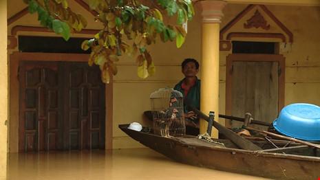 Lũ trên sông Gianh đang nhấn chìm hàng ngàn ngôi nhà - 3