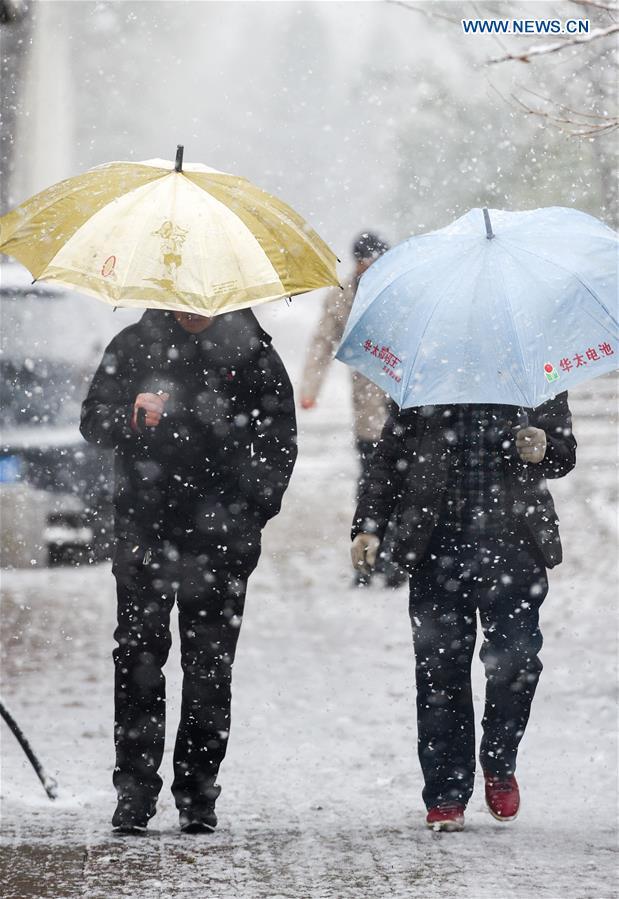 Trung Quốc: Rét kỉ lục, tuyết phủ trắng xóa nhiều nơi - 7