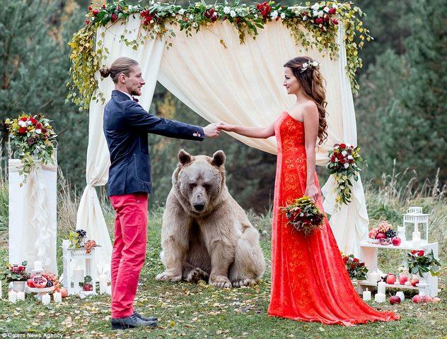 Cặp đôi làm đám cưới cùng gấu nâu nặng gần tạ rưỡi - 6