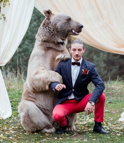 Cặp đôi làm đám cưới cùng gấu nâu nặng gần tạ rưỡi - 4