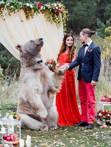 Cặp đôi làm đám cưới cùng gấu nâu nặng gần tạ rưỡi - 10