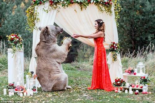 Cặp đôi Nga chụp ảnh cưới cùng gấu nâu khổng lồ - 7