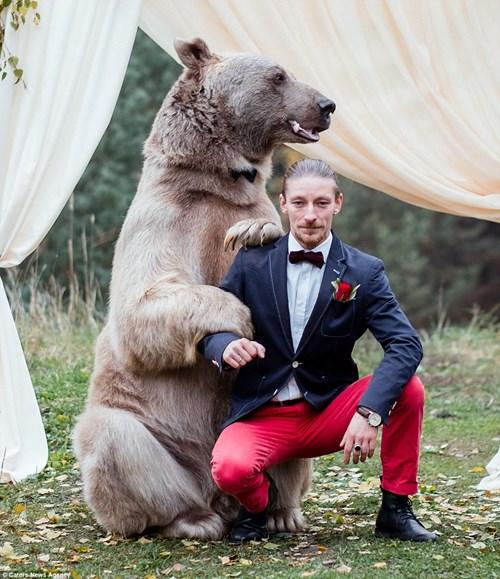 Cặp đôi Nga chụp ảnh cưới cùng gấu nâu khổng lồ - 9
