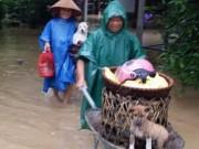 Tin tức trong ngày - Quảng Bình: Hàng ngàn hộ dân chạy đua tránh lũ
