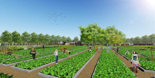 Nhà phố vườn 520 triệu tại Nam Sài Gòn: Giải pháp tích lũy BĐS của giới trẻ - 4