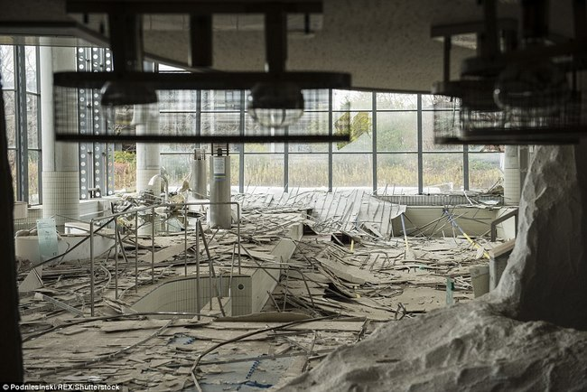 Thâm nhập khu vực thảm họa hạt nhân Fukushima sau 5 năm - 3