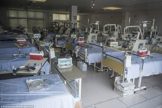 Thâm nhập khu vực thảm họa hạt nhân Fukushima sau 5 năm - 6