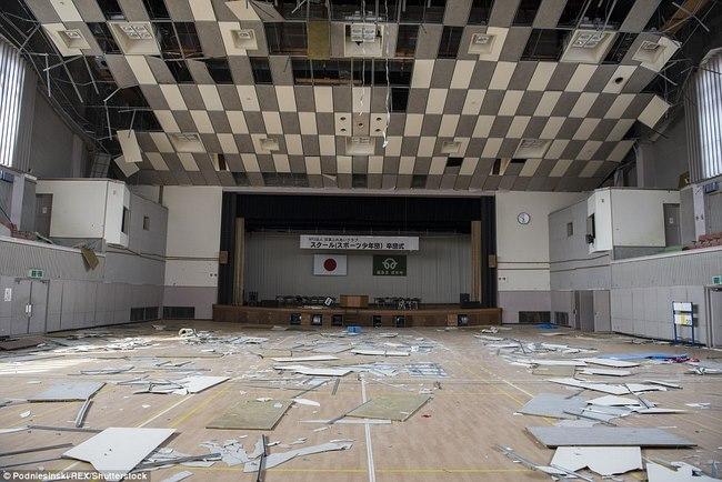 Thâm nhập khu vực thảm họa hạt nhân Fukushima sau 5 năm - 9