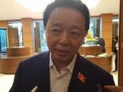 Tin tức trong ngày - Bộ trưởng Môi trường nói về xử lý trách nhiệm vụ Formosa